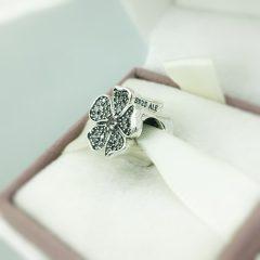 фотография шарм пандора цветение яблони 791831NBP №2