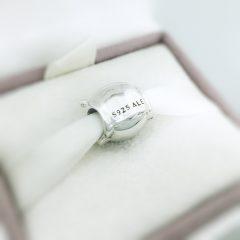 фотография шарм пандора принцесса серебро 791960 №2