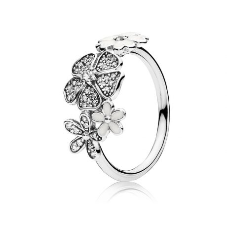 фотография кольцо пандора цветочное настроение 190984CZ-1