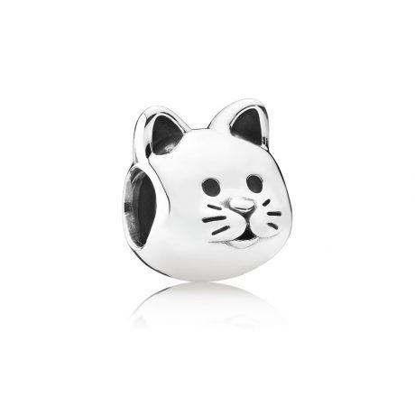 фотография шарм пандора котик 791706