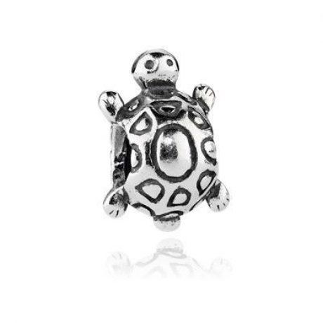фотография шарм пандора черепаха