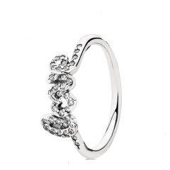 фотография кольцо пандора любовь с56342а-2