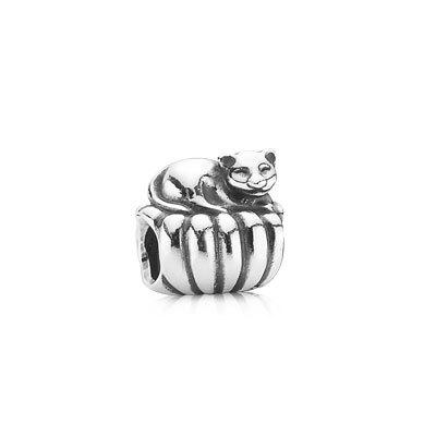 фотография шарм пандора кошка на диване 021SA1500