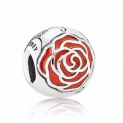 фотография шарм пандора зачарованная роза