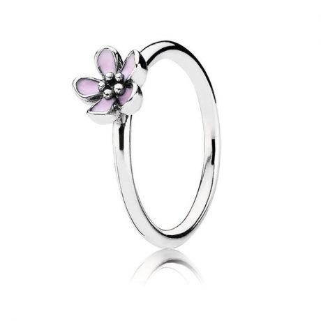 фотография кольцо пандора цветение сакуры к65743р-6