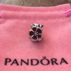 фотография коллекционный шарм пандора маковое цветение 791543 №1