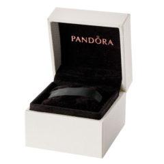фотография коробочка пандора для шармов, колец и сережек